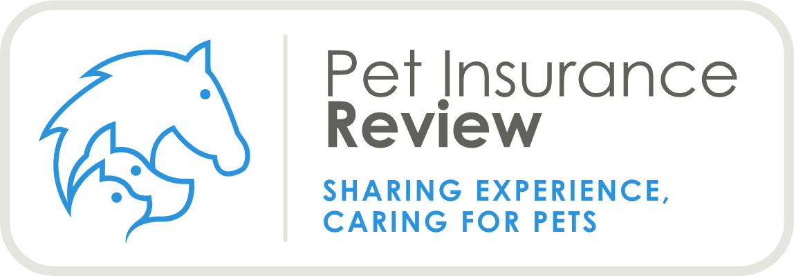 Animal Friends Pet Insurance Reviews Pet Insurance Review
